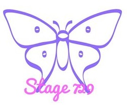 stage 729 logo color